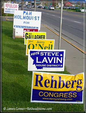 lawn_signs_2010