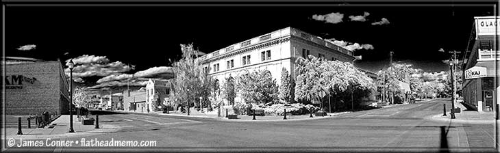 library_faux_ir_730